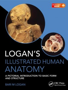 Logan's Illustrated Human Anatomy