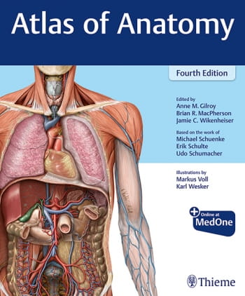 Atlas of Anatomy.jpg